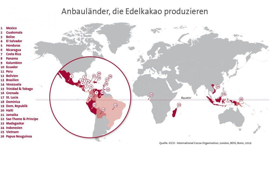 """Infografik """"Anbauländer, die Edelkakao produzieren"""""""