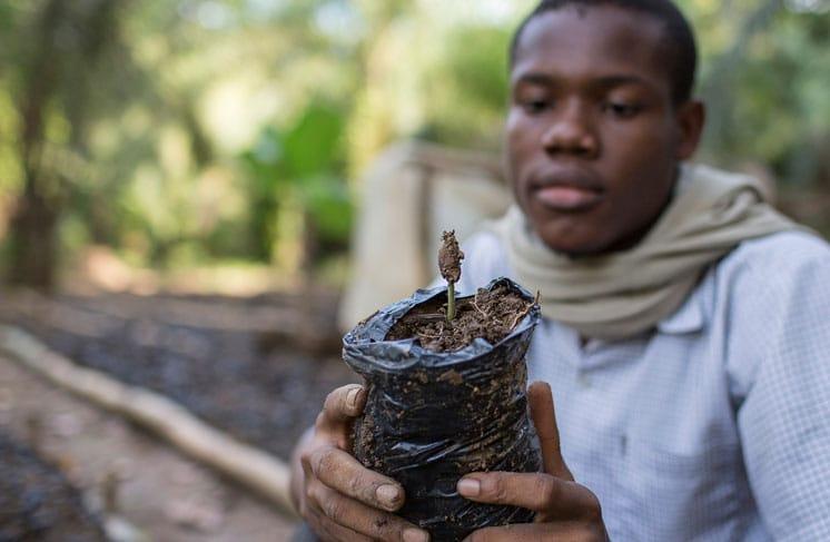Bundesregierung, G7-Beschlüsse, nationale Nachhaltigkeitsstrategie, Auszeichnung Forum Nachhaltiger Kakao