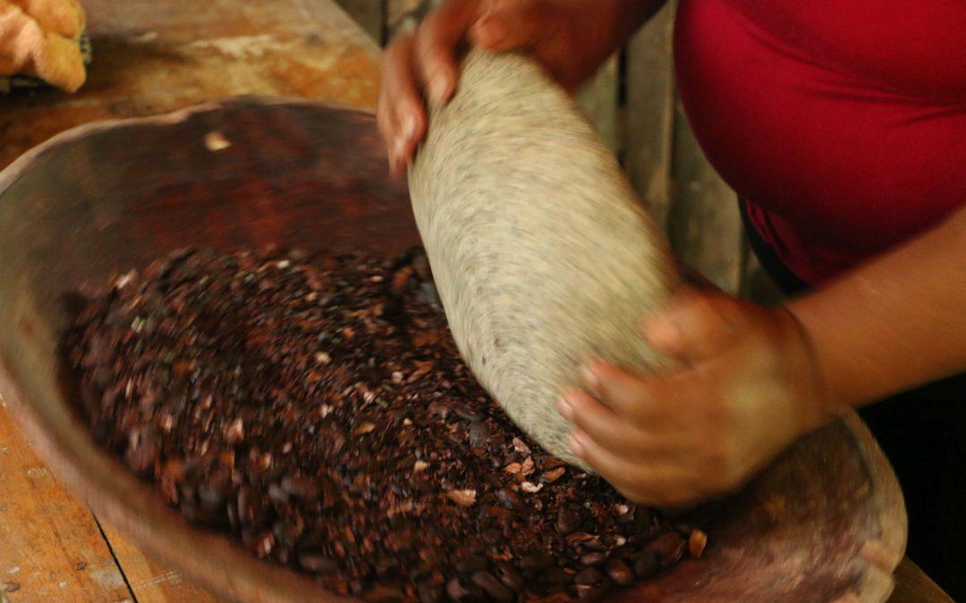 Kurz erklärt: Kakaonibs